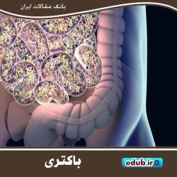 پیشگیری از عفونتهای بد با تعقیب باکتریهای خوب
