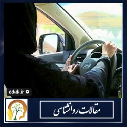 چرا زنان در رانندگی منضبط تر هستند؟